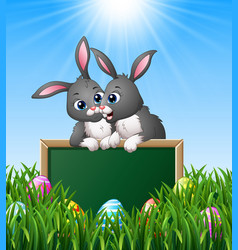 cartoon rabbit couples holding green chalkboard in vector image