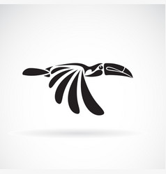 hornbill design on white background wild animals vector image