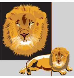Lion animals king vector