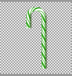 realistic green xmas candy cane vector image