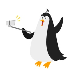 flat style of penguin selfie Isolated on white vector image