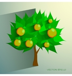 apple tree isolated on White background vector image vector image