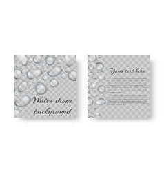 Leaflet with drops of dew vector