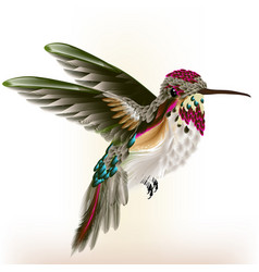 Beautiful colorful hummingbird in fly vector