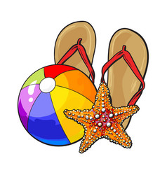flip flops starfish and inflatable beach ball vector image