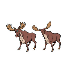 funny moose with funny reaction vector image
