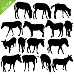 Horse and Zebra silhouettes vector image