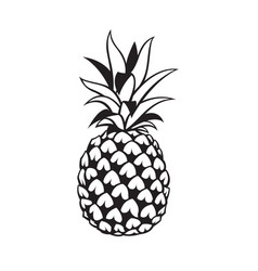 Image pineapple fruit vector