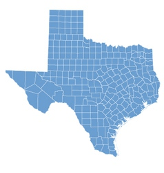 state map of texas by counties vector image