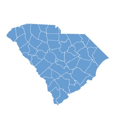 State map of South Carolina by counties vector image vector image