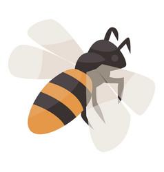 Bee icon isometric style vector