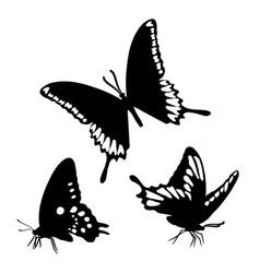 Black silhouettes butterflies isolated white vector