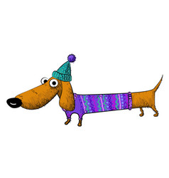 Cartoon image of dachshund vector