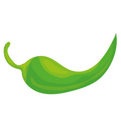 chilli pepper vegetable icon vector image