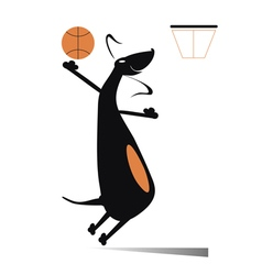 Dog a basketball player vector