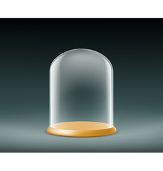 Glass dome on a dark background vector
