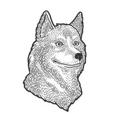Husky dog sketch vector
