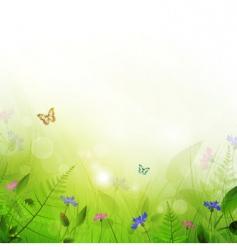 summer meadow vector image vector image