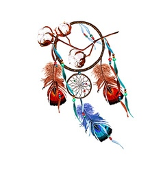 Cotton Dreamcatcher vector image