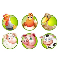 Farm animals on green badges vector image