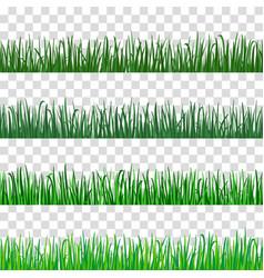green grass pattern vector image