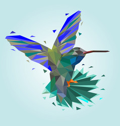 isolated of low poly colorful hummingbird back vector image