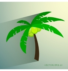 Palm tree isolated on white photo-realistic vector