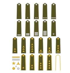 Czech army insignia vector image