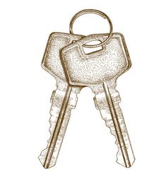 Engraving of two keys vector