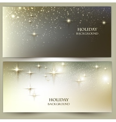 Set of Elegant Christmas banners with snowflakes vector image vector image