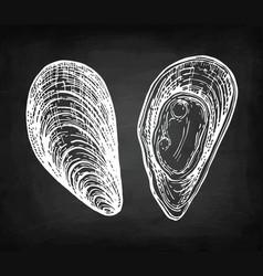 Chalk sketch mussels vector