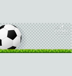 football banner vector image