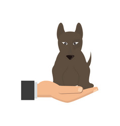 Human hand holding dog pet veterinary concept vector