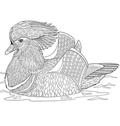 Mandarin duck adult coloring page vector