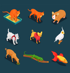 pet shop isometric icons set vector image vector image