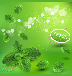 green background with fresh min vector image