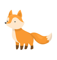 Cute fox is standing on four legs vector