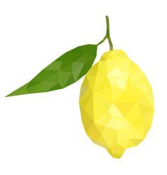 lemon with leaf polygonal vector image