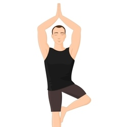 Man in yoga tree pose vector image