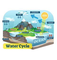 Water cycle graphic isometric scheme vector