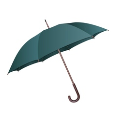 Green umbrella on white background vector