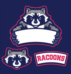 Raccoon in sport mascot style hold the blank vector