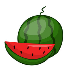 Watermelon fruit isolated vector