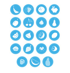 fruit berries and nuts icons vector image vector image