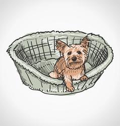 Yorkshire Terrier in Basket vector image vector image