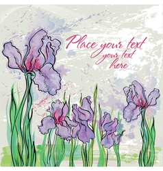 background with irises vector image vector image