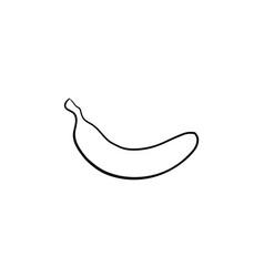 banana hand drawn sketch icon vector image