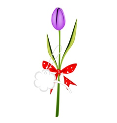 A Fresh Violet Tulip with Red Ribbon vector image
