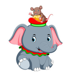 a little elephant play with a cute mouse on hat vector image