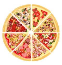 A set of slices of a variety of pizza vector